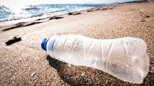 10 top tips for a plastic-free holiday this summer