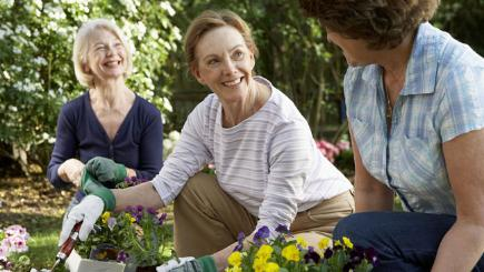 4 ways to learn more about gardening and how to find the right course for you