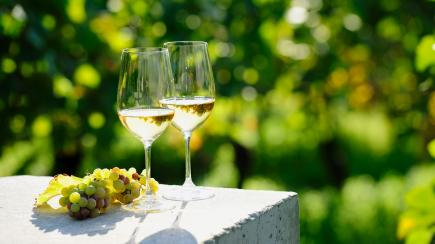6 refreshing white wines to drink this summer