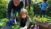 6 ways to get your kids into gardening
