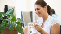 7 indoor plants to boost your work environment and productivity