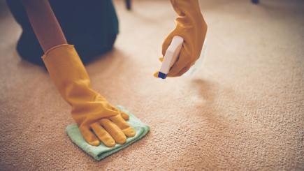 7 simple tricks to clean your carpet on a budget