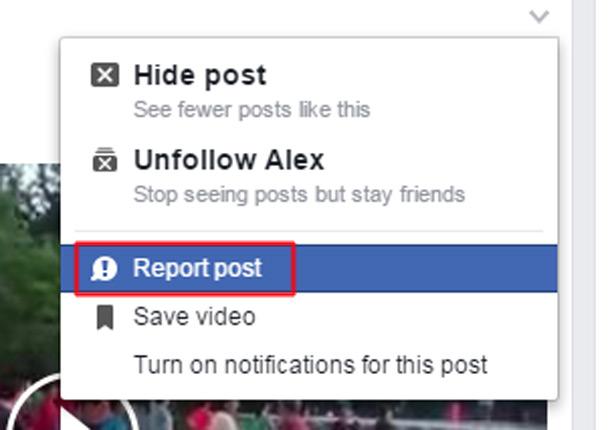 Facebook Report screenshot
