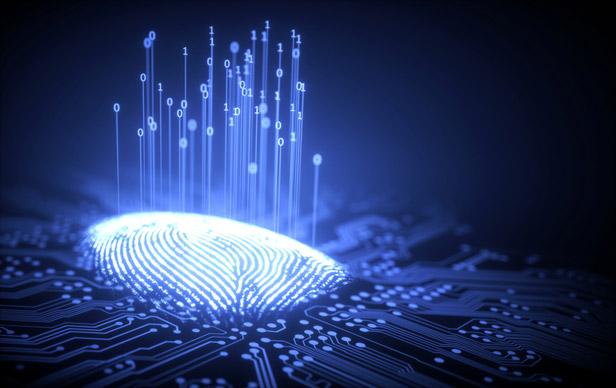 Fingerprint grapic