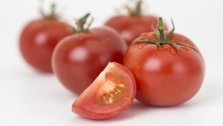 Genetically-modified tomatoes created by British scientists (The John Innes Centre/PA)