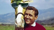 Alan Young pictured with Mister Ed in 1962 (AP)