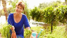 Allotments for beginners: How to get one and what to do with it