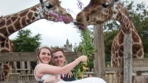 Animal-loving bride poses with giraffes in wedding dress