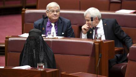Australian politician blasted for wearing burqa while calling for ban in Senate