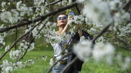 Areas bask in five-year high for March temperatures
