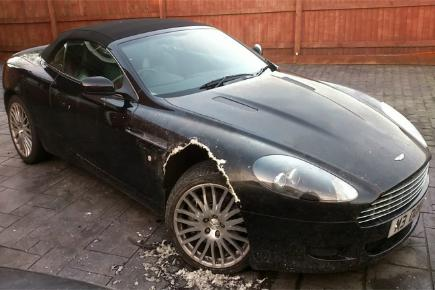 Aston Martin chewed by dog