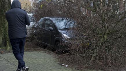 Storm kills three in the Netherlands, two in Germany