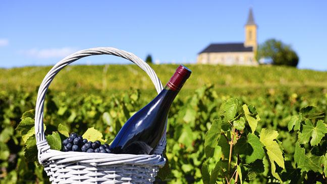 Image result for wines from france