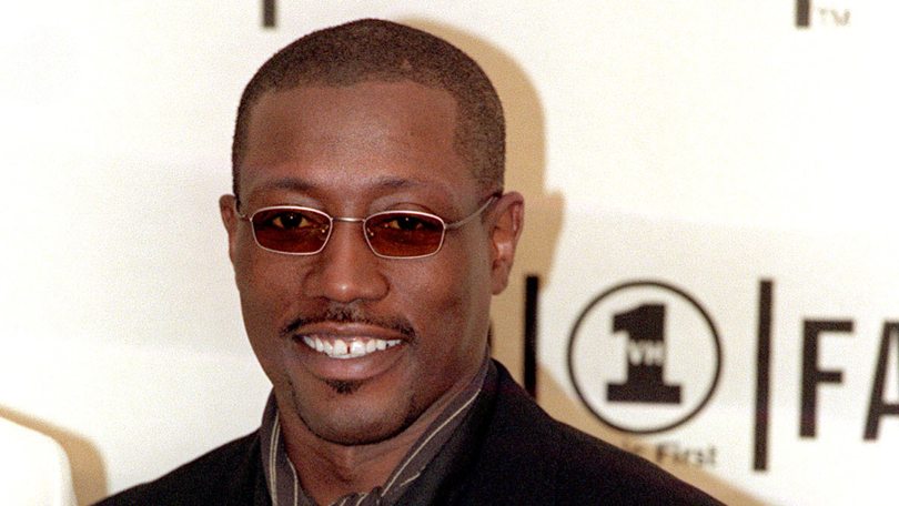 black panther wesley snipes