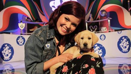 Guide Dog Training Tv Programme