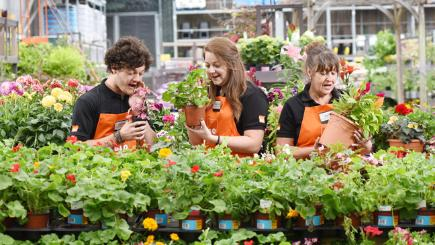 B&Q employs 'plant whisperers' to help nurture their blooms