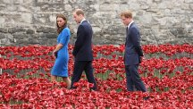 The Duke and Duchess of Cambridge and Prince Harry view the Tower of London's poppy installation