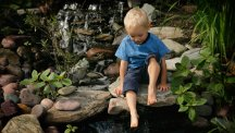 Could your pond be a death-trap? How to keep children safe in the garden