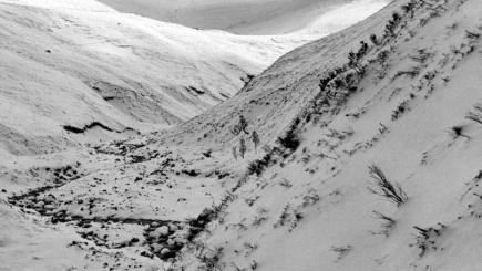 Couple and dog missing in Cairngorms found safe and well