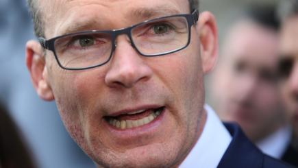 Fine Gael leadership race continues