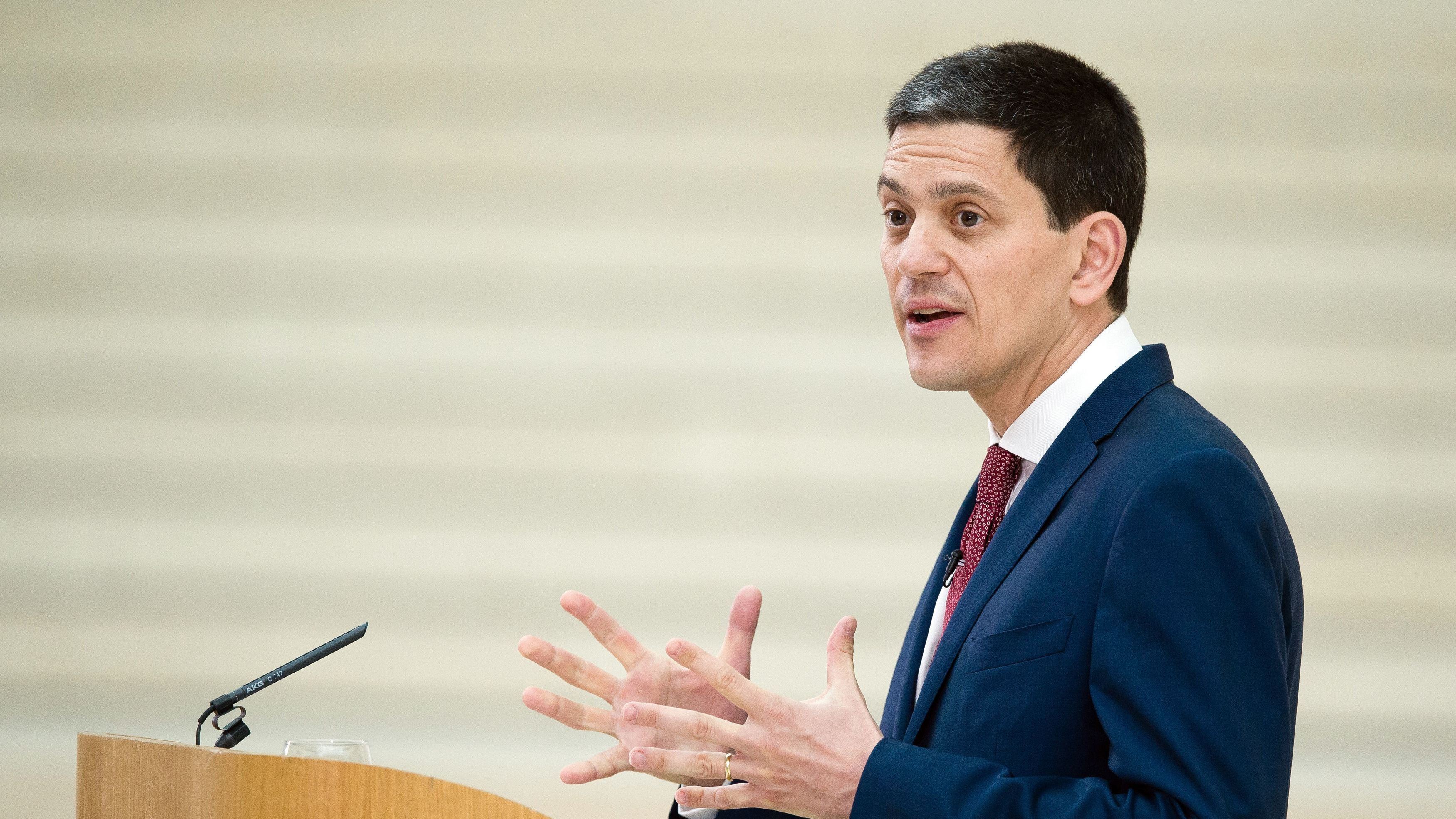 United Kingdom needs Brexit 'safe harbour' - David Miliband