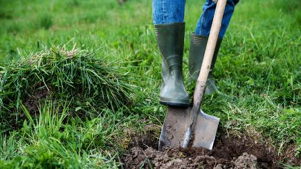 Digging in the garden: How to do it safely and avoid injury