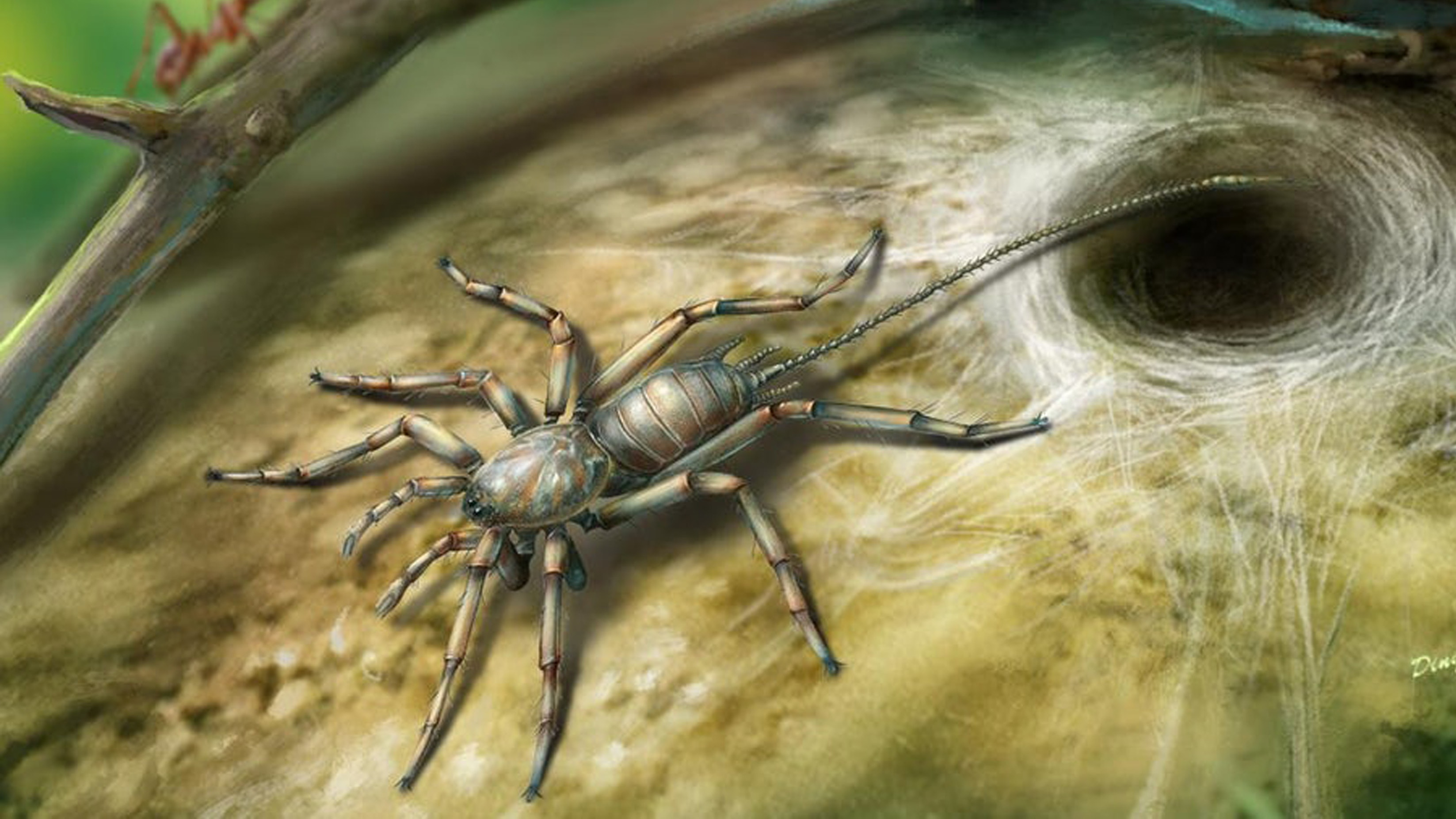 Odd  ancient spider with tail discovered by scientists in Myanmar