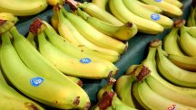 The Tesco worker was unpacking the bananas when he found five bags of white powder