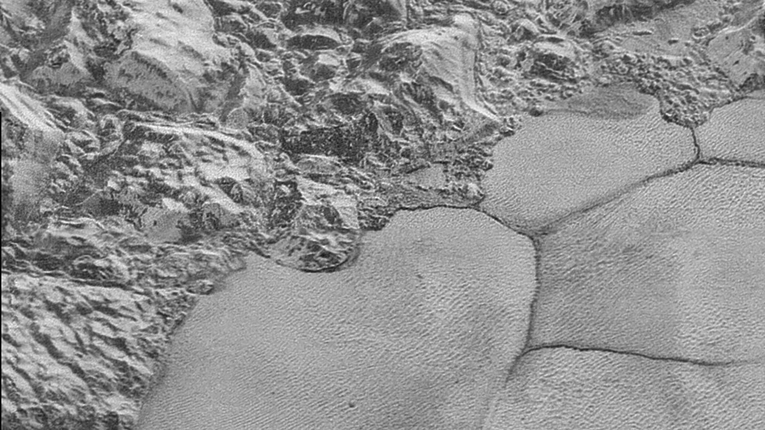 Wondrous dunes on Pluto are made of grains of frozen methane