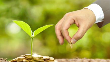 Ethical financial products: could switching save you money?