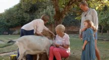 Fans chuckle at Mary Berry's bid to milk a goat