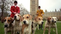 February 18, 2005: Hunting ban comes into force across England and Wales