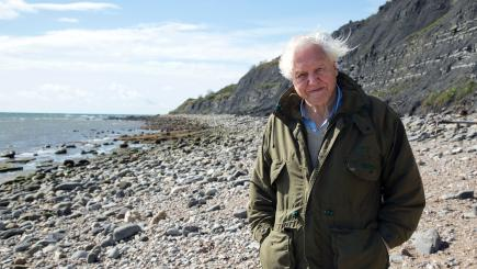 Fossils and sea monsters bring David Attenborough to Dorset