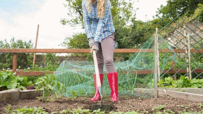 Keep fit in the garden: How to use your gardening hobby to keep fit - BT