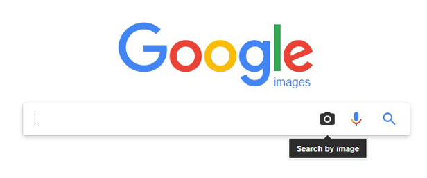 Finding Pictures On Google: Search By Image And Reverse