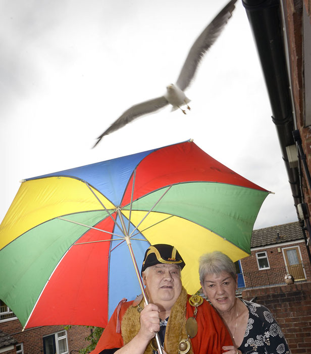 Angry birds: residents arm themselves with umbrellas as