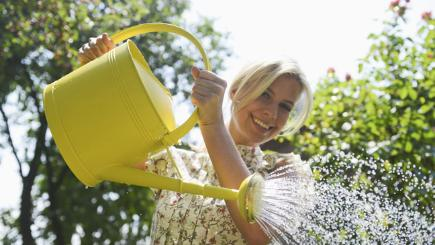Handy tips on how to save water during the warm months