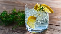 How a G&T can keep mosquitoes at bay and 15 other things you didn't know about gin