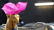 How to stop your umbrella turning inside out