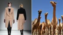 How to wear camel without looking like a camel: The good and bad 70s trends