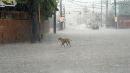 Hurricane Matthew's Track Shifts Again, Still a Threat to SC
