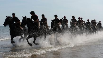 In pictures: Household Cavalry take their horses for a day at the seaside