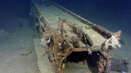 Microsoft co-founder Paul Allen says he has found a massive Japanese battleship off the coast of the Philippines (AP)