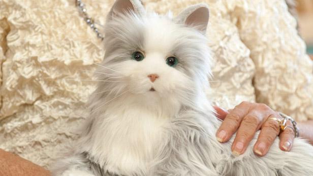 Hasbro robotic pet cat