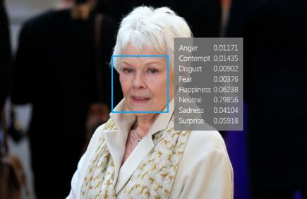 Judi Dench with Microsoft Facial recognition result