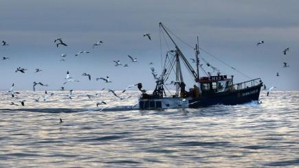 The fishing industry would return greater catches if global warming can be kept to 1.5C or less, a study has found