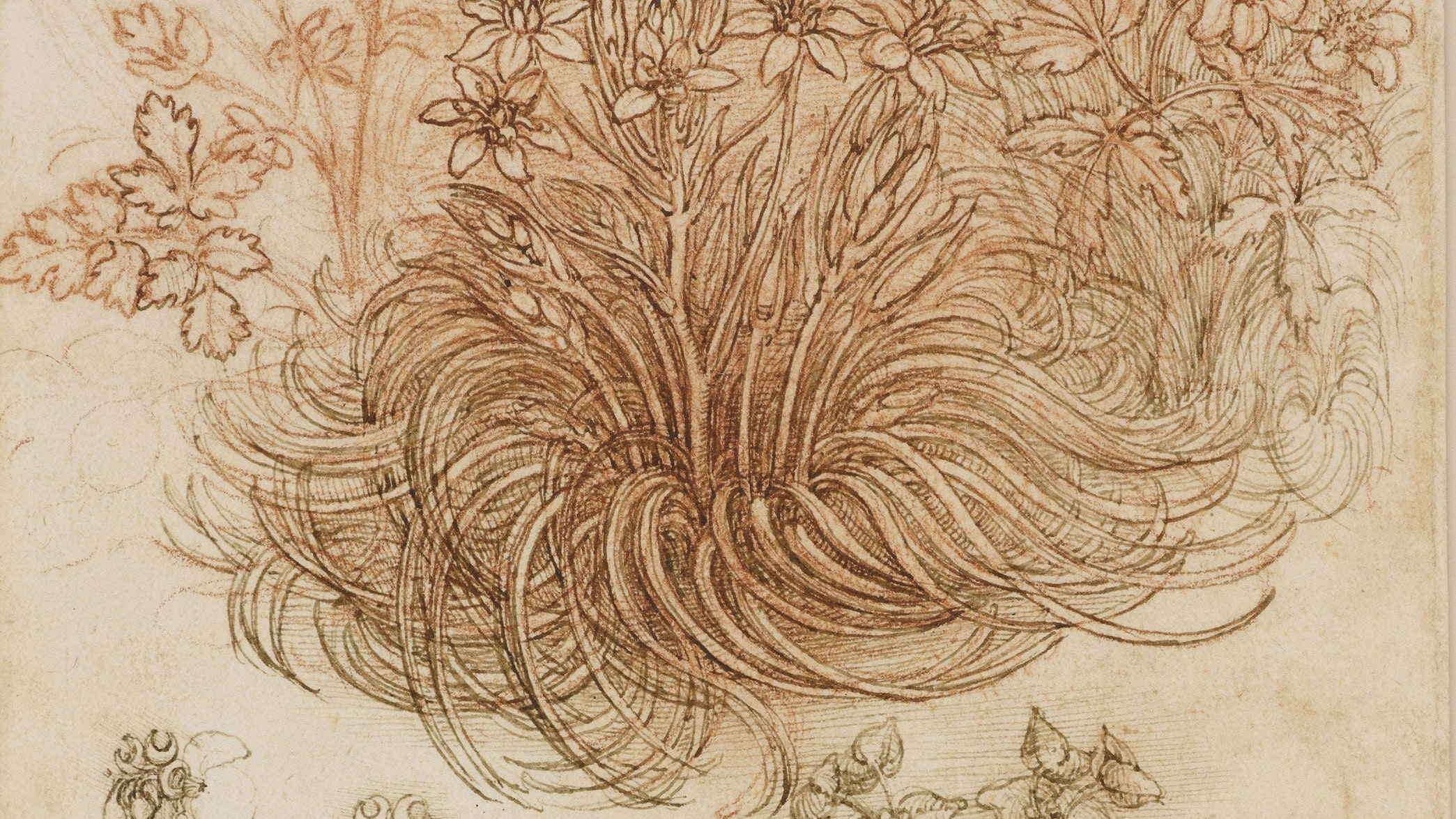 Leonardo da Vinci's undiscovered work goes on United Kingdom tour