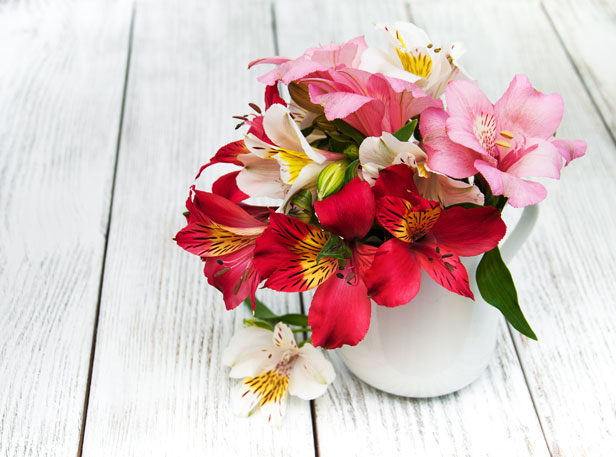 What valentines day flowers really mean bt lilies mightylinksfo