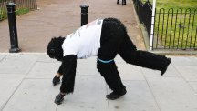Man in gorilla suit still crawling London Marathon – and will finish on Friday