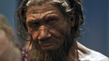 Neanderthal DNA could be responsible for some characteristics in modern humans